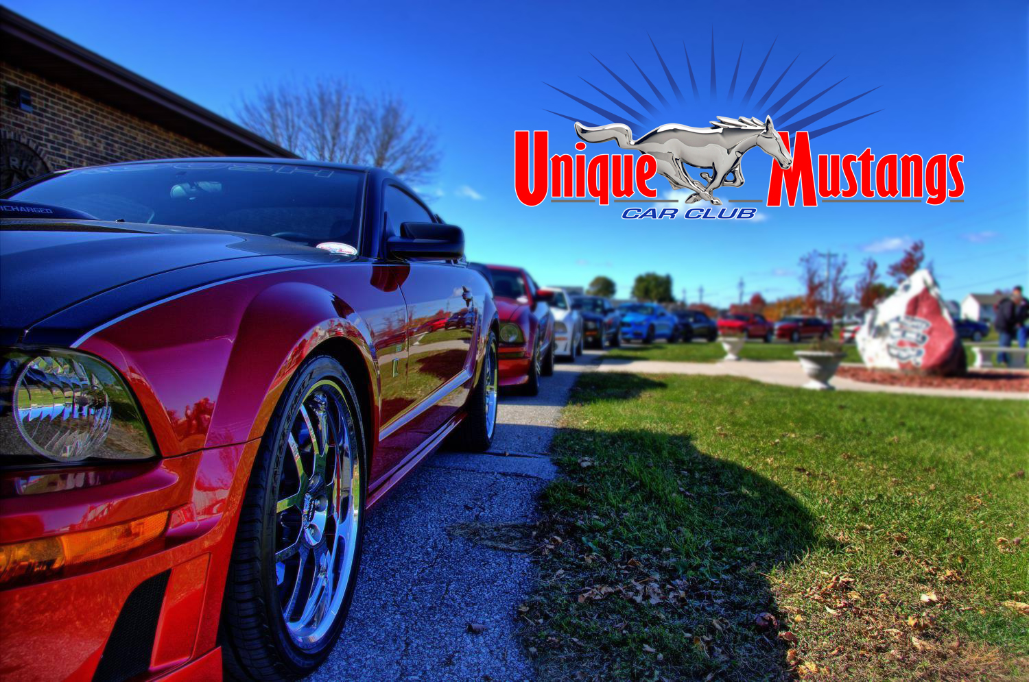 Unique Mustangs Car Club